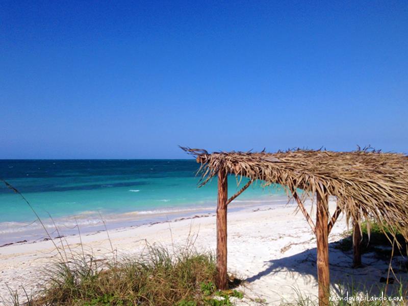 Cayo Levisa beach